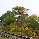 Railroad track 4 by Carolyn Clark