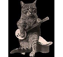 Cat Playing Banjo Guitar Photographic Print