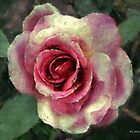 Rough Satin Rose by RC deWinter