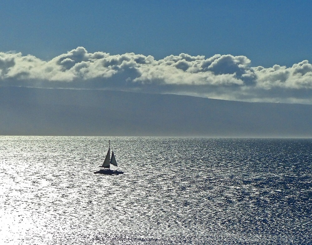 Silver sea and sail by Linda Sparks