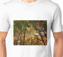 Through the Trees in October Unisex T-Shirt