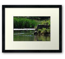 Top Tier Pond at Lisle Community Park Framed Print