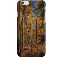 """Aspen #11"" iPhone Case/Skin"