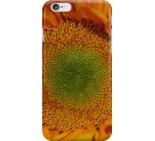 Patterns of Life iPhone Case/Skin