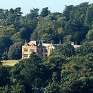 Elizabethan Manor house in the woods by Rivendell7