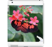 Butterfly 11 iPad Case/Skin