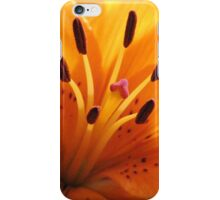 Day Lilies Make The Day iPhone Case/Skin