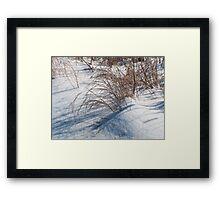Stubble in fresh falling snow Framed Print