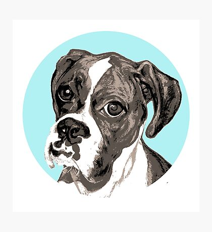 Boxer Eyes ~ Vintage Photographic Print