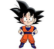 Dragon Ball Z Goku Gohan Photographic Print