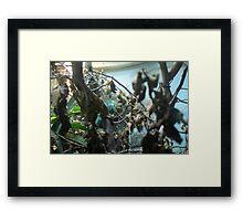 Ambilobe Panther Chameleon Framed Print