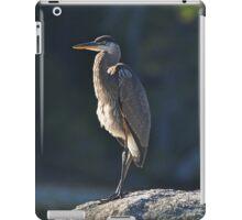 Immature Great Blue Heron iPad Case/Skin