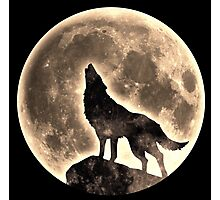 Howling Wolf, full moon, fullmoon, wild, dog, wolves Photographic Print