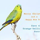 Christmas card by OBparrot
