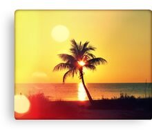 Sunset Palm I Canvas Print