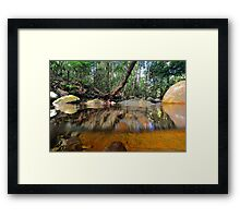 Above and below Daintree Framed Print