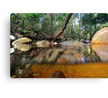 Above and below Daintree Canvas Print