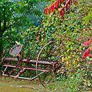 Antique rake by Carolyn Clark