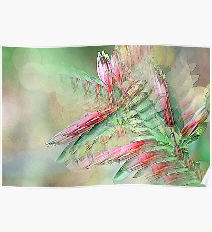 Flowers in abstract form Poster