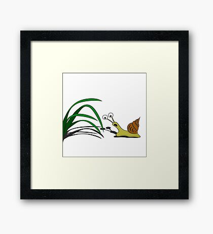 Snail on the grass Framed Print