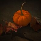 It's Autumn by TOM YORK