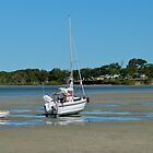 When the Tide Goes Out! 'Tin Can Bay' Queensland. by Rita Blom