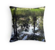Otter Springs Pond Throw Pillow