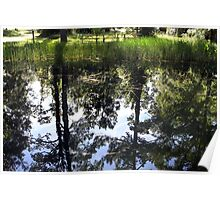 Otter Springs Pond Poster