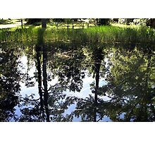 Otter Springs Pond Photographic Print
