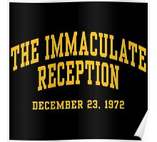 The Immaculate Reception Poster