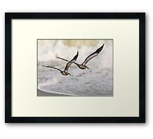 Never Leave Your Wingman - Pelican Pair Framed Print