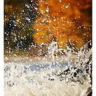 Waves Against The Rocks In Autumn, no.c04 by Solomon Walker