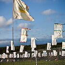 Mysteryland flags by amanda reed
