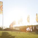 More Mysteryland Flags by amanda reed