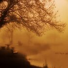 Golden Fog....Snake River...Marsing, Idaho...USA by Diane Arndt