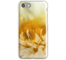Summer Daisy iPhone Case/Skin