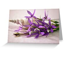 Shell And Flower Beauty Greeting Card
