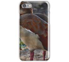 Egyptian Goose iPhone Case/Skin