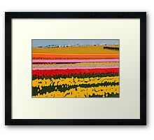 The Ultimate Colour Field Framed Print