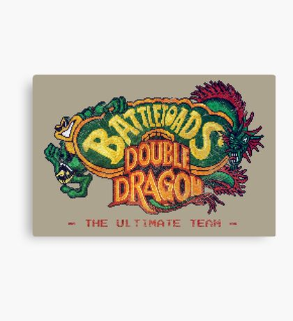 Battletoads + Double Dragon Canvas Print