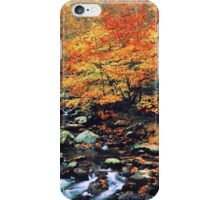 BEECHES ALONG MIDDLE PRONG iPhone Case/Skin