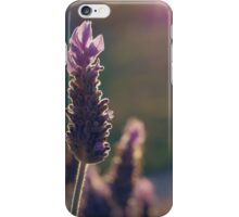 French Lavender iPhone Case/Skin