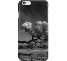 Windswept Myall iPhone Case/Skin