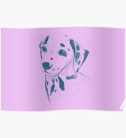 Drawing of dalmatian dog. Illustration Poster