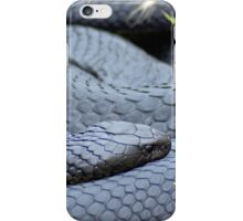 Black Lowland Copperhead iPhone Case/Skin
