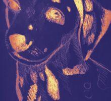 Drawing of dalmatian dog. Illustration Sticker