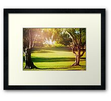 Green Morning Meadow Light Filled, with Old Trees Framed Print