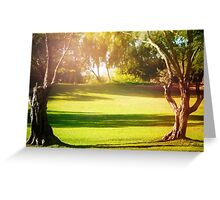 Green Morning Meadow Light Filled, with Old Trees Greeting Card