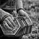 The Concertina  by ArtbyDigman