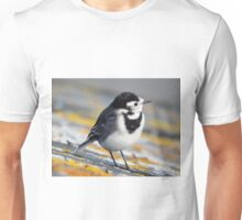 Pied Wagtail Unisex T-Shirt